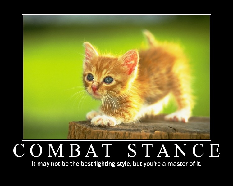 Cute animals motivational posters